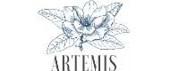 Artemis code promo